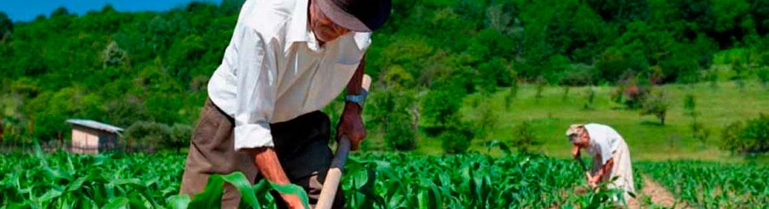 2º Módulo das inovações acerca da aposentadoria por Idade rural e Híbrida, trazidas pelo Decreto 10.410 de 30/06/2020.